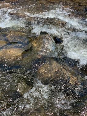 river1a